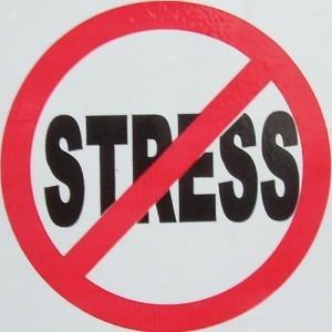 Stresul prelungit duce la micşorarea creierului
