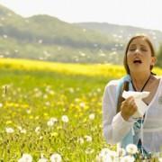 Calendarul alergenilor